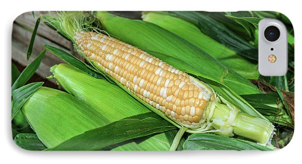 Sweet Corn IPhone Case by Todd Klassy