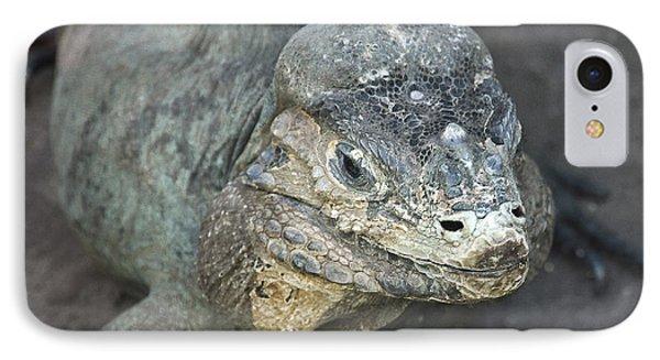 IPhone Case featuring the photograph Sweet Face Of Rhinoceros Iguana by Miroslava Jurcik