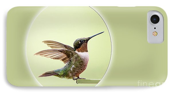 IPhone Case featuring the photograph Sweet Little Hummingbird by Bonnie Barry