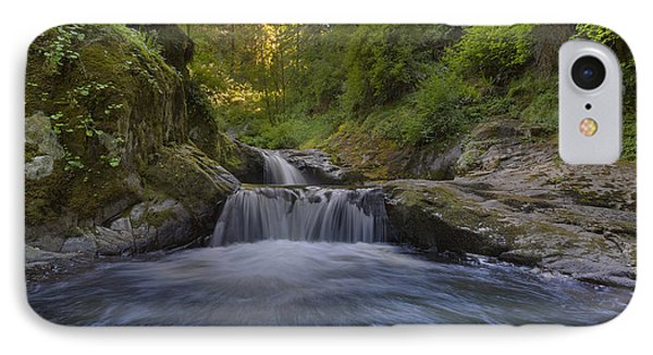 Sweet Little Waterfall Phone Case by David Gn