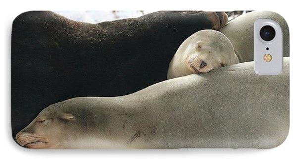 Sweet Nap Time IPhone Case by Carol Groenen