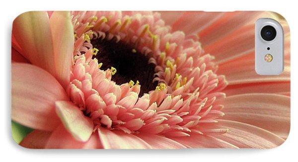 Sweet Peach Gerbera #2 IPhone Case