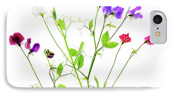 IPhone Case featuring the photograph Sweet Peas by Rebecca Cozart