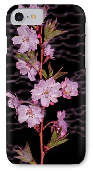 Sweet Smell Of Spring Phone Case by Debra     Vatalaro