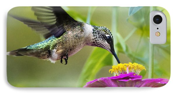 Sweet Success Hummingbird Square IPhone 7 Case by Christina Rollo