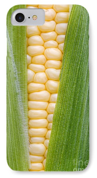 Sweetcorn IPhone Case by Tim Gainey