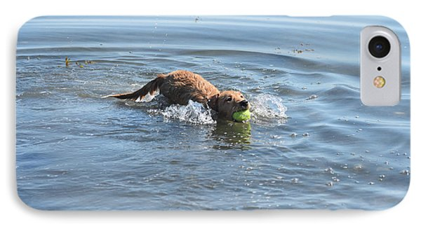 Swimming Toller Dog With A Ball In His Mouth IPhone Case by DejaVu Designs