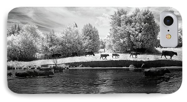 Swimming With Cows IPhone Case