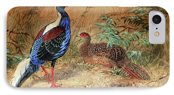 Swinhoe's Pheasant  IPhone Case by Joseph Wolf