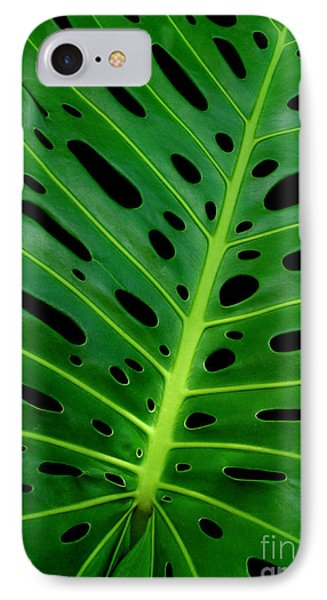 Swiss Cheese Plant IPhone Case by James Temple