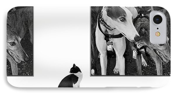 Sworn Enemies - Gently Cross Your Eyes And Focus On The Middle Image Phone Case by Brian Wallace