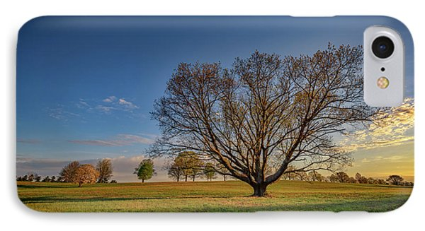 Sycamore In Valley Forge IPhone Case by Rick Berk