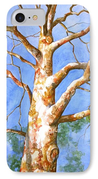 Sycamore Tree With A Memory Phone Case by Patricia Allingham Carlson