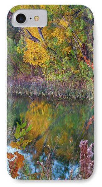 Sycamores And Willows IPhone Case by Tim Fitzharris