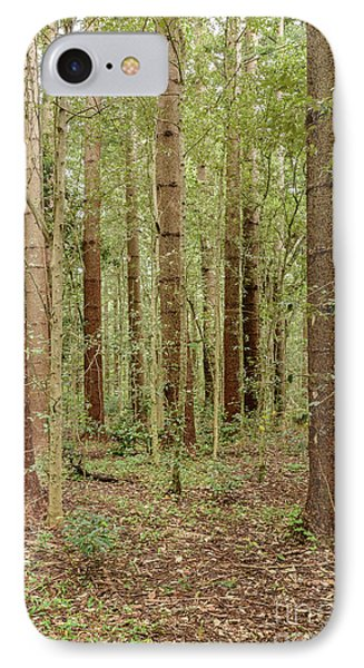 IPhone Case featuring the photograph Sylvan Beauty by Werner Padarin