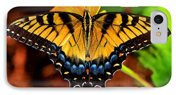 Symmetry Of A Butterfly 004 IPhone Case by George Bostian