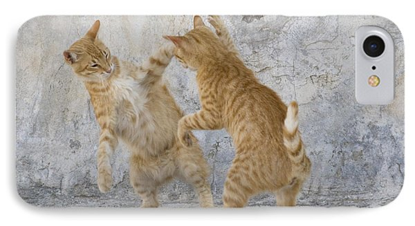 Tabby Cats Fighting IPhone Case by Jean-Louis Klein & Marie-Luce Hubert
