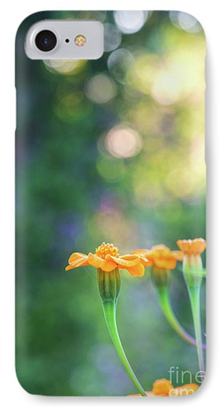 Tagetes Dawn IPhone Case