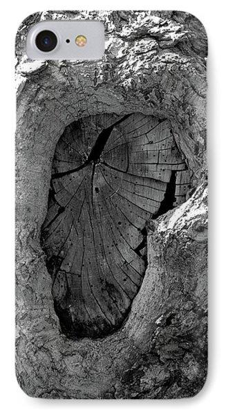 IPhone Case featuring the photograph Tahoe Abstract Bark by LeeAnn McLaneGoetz McLaneGoetzStudioLLCcom