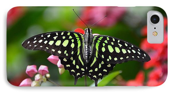 Tailed Jay4 IPhone Case