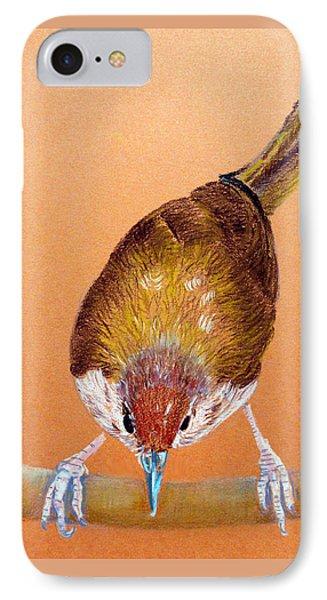 Tailor Bird IPhone Case by Jasna Dragun