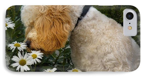 Taking Time To Smell The Flowers IPhone Case by Susan Candelario
