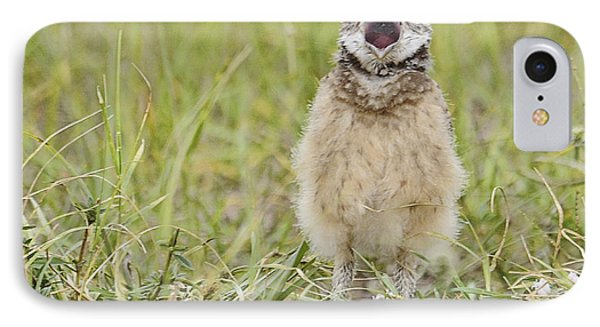 Talking Baby Burrowing Owl  Phone Case by Keith Lovejoy