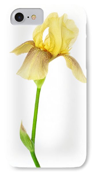 Tall And Graceful Yellow Iris IPhone Case
