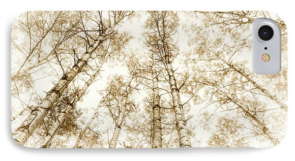 IPhone Case featuring the photograph Tall Aspens by Elena Elisseeva