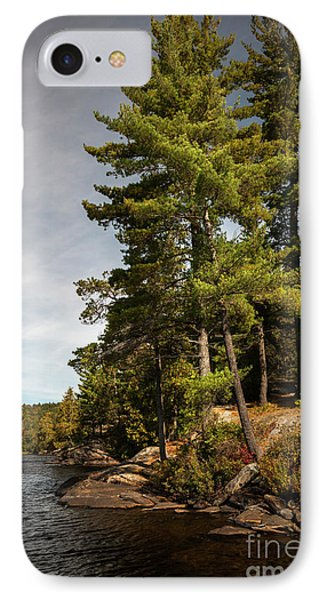 IPhone Case featuring the photograph Tall Pines On Lake Shore by Elena Elisseeva