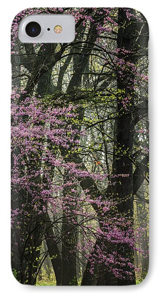 Tall Red Buds In Spring IPhone Case by Joni Eskridge