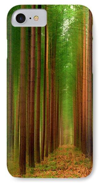 Tall Trees Phone Case by Svetlana Sewell