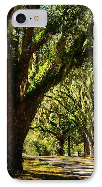 Tallahassee Canopy Road IPhone Case