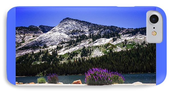 Tanaya Lake Wildflowers Yosemite IPhone Case