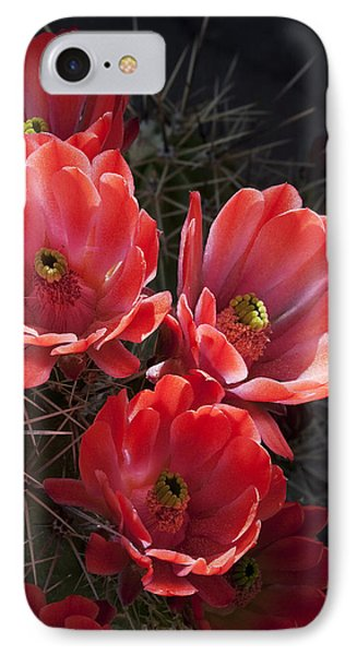 Tangerine Cactus Flower Phone Case by Phyllis Denton