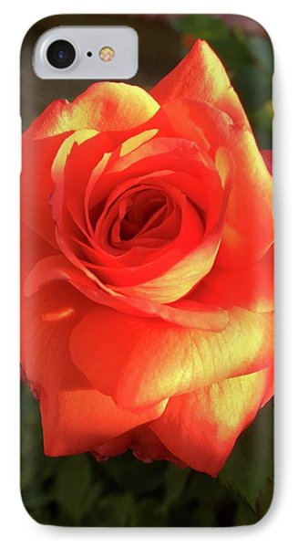 Tangerine Dream IPhone Case by Russell Keating