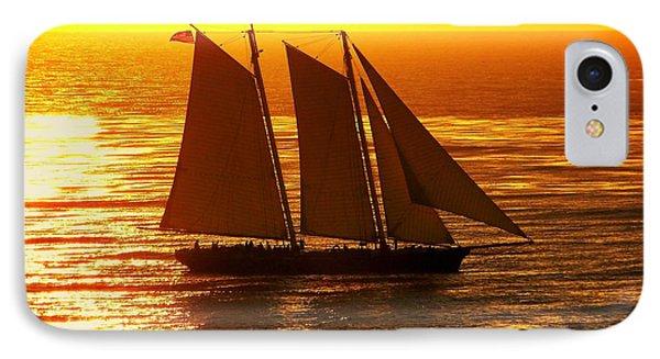 Tangerine Sails Phone Case by Karen Wiles