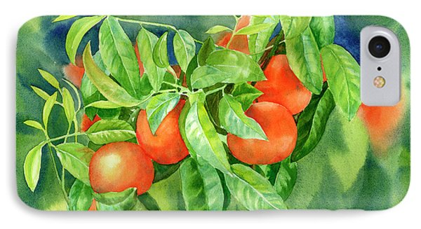 Tangerines With Background 2 IPhone Case by Sharon Freeman