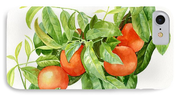 Tangerines With Leaves IPhone Case by Sharon Freeman