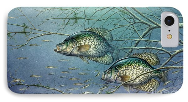Tangled Cover Crappie II Phone Case by Jon Q Wright