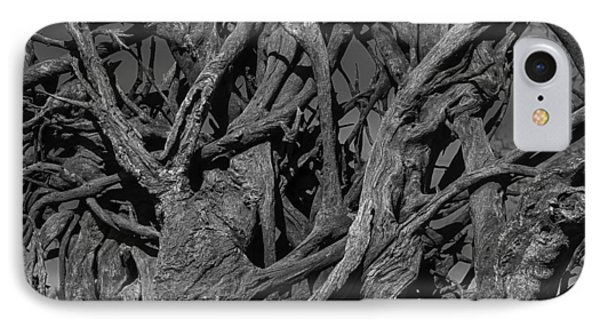 Tangled Tree Roots IPhone Case by Garry Gay