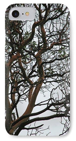 Tangled Web Tree Phone Case by Carol  Eliassen
