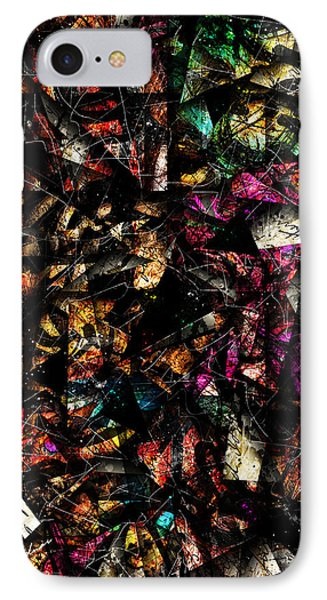 Tapestry  IPhone Case by Gary Bodnar