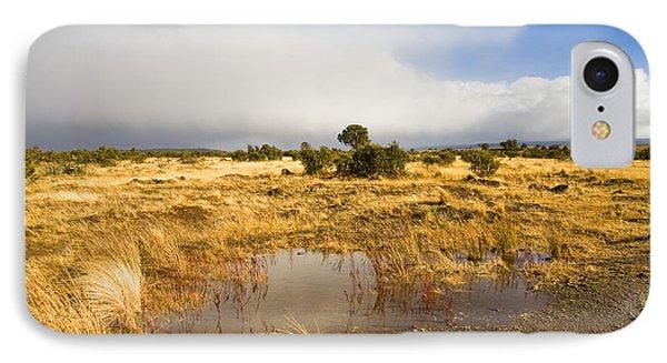 Tasmanian Storm  Phone Case by Mike  Dawson