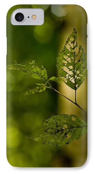 Tattered Leaves IPhone Case by Mike Reid