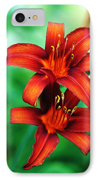 Tawny Beauty IPhone Case