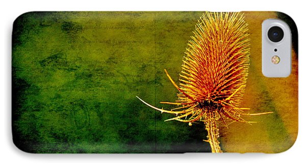 IPhone Case featuring the photograph Teasel Head by Dariusz Gudowicz