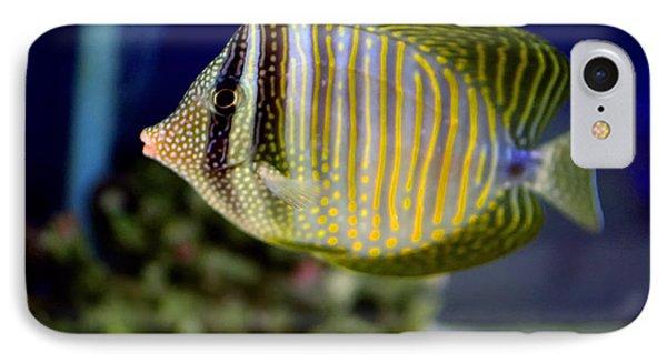 Technicolor Fish Phone Case by Madeline Ellis