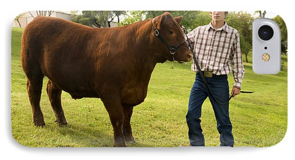 Teen And Red Angus Steer IPhone Case by Inga Spence