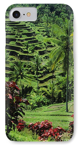 Tegalalang, Bali Phone Case by William Waterfall - Printscapes